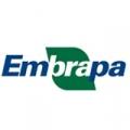 m_embrapa